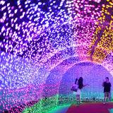 LED 휴일 끈 빛 정원 훈장
