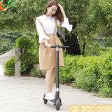 Promoción más reciente de aleación de aluminio Venta de e-bici plegada para montar a caballo
