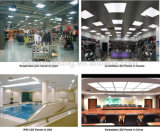 indicatore luminoso di comitato di alta qualità 620X620mm LED di 48W Ra>90
