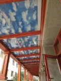 Entre el cristal celulares/Panal sombras para las puertas de doble acristalamiento