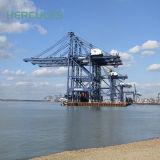الصين يزوّد 10, 16, 22, [40ت] ميناء [أوسد] وعاء صندوق مرفاع