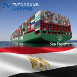 Betrouwbare Oceaan & Overzees die van China aan Egypte/Kaïro/Port Said/Alexandra/Sokhna verschepen