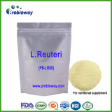 유산균 Reuteri Probiotics 개인 상표 영양 보충교재 Nutraceuticals
