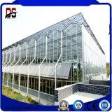 상업적인 장기 사용 플로트 유리 온실