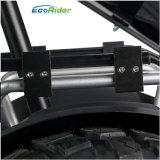 Motociclo elettrico del motorino della rotella di Ecorider due di motore della bici elettrica elettrica del motorino