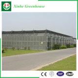 Bewerkend het Groene Huis van het PC- Blad voor het Planten van Groenten/Bloemen