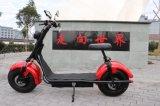 Motocicleta elétrica dobro de Citycoco Pólo Harley do projeto 2017 novo