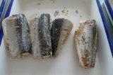 425g Venta caliente Caballa Conservas de Pescado en salmuera