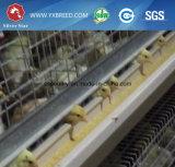 De Loods van de Braadkip van het Type van Apparatuur H van het Landbouwbedrijf van het gevogelte