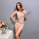 Bride Bralette Sexy Fancy Bra Panty set Ladies Sexy Wear