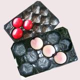 Gutes Plastikfrucht-Wegwerftellersegment der Qualitätspp.