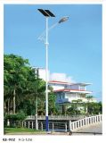 La energía solar alumbrado público para las zonas rurales de China Factory
