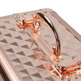 Высококачественное роскошное алюминиевый салон красоты случае ювелирного дела