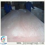 El roble rojo Chapa de madera natural con alta calidad