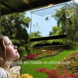 100% 아이를 위한 명확한 아크릴 Windows 새 집, 최고 외부 Windows에 의하여 거치되는 새 지류 & 고양이