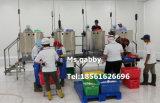 Peeling automatique de la crevette de la viande de l'équipement de séparateur d'os de la machine pour la crevette Peeling