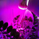 Il LED coltiva la pianta d'appartamento chiara 9LEDs