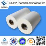 BOPP che ricoprono prima la pellicola calda della laminazione (opaca)