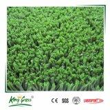 Erba artificiale sintetica acquistabile preferita dell'erba 10mm della corte di tennis