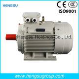 Motor eléctrico de la inducción Squirrel-Cage asíncrona trifásica de la CA de Ye3 3kw-8p para la bomba de agua, compresor de aire