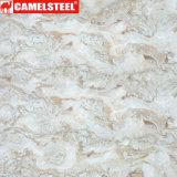 3D personalizadas impresión PPGI de mármol para suelos decoración de Shandong