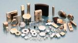 Uitstekende kwaliteit Gesinterde Magneten NdFeB voor de Generator van de Wind van mw