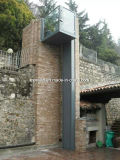 De stationaire Verticale Hydraulische Gehandicapte Lift van de Rolstoel met Ce voor Verkoop