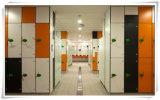 다채로운 저장 내각 현대 HPL 경기장 로커