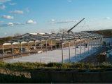Azienda avicola prefabbricata della tettoia del pollo di basso costo da vendere