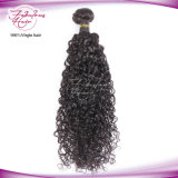 Het in het groot Haar van de Pruik van het Menselijke Haar van 100% Krullende Maagdelijke Indische