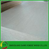 Volles Pappel-Material-Furnierholz