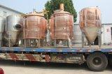 普及したステンレス鋼ビール発酵槽10bblビール発酵の発酵システム