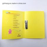 De plastic Zak van het Dossier van de Portefeuille van het Document de Druk van de Manier (de omslag van het dossier)