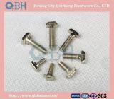 SS / Plain / Plated T Head Bolt / Bolt avec écrou hexagonal et lave-linge