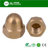 금관 악기 육 돔 모자 에이콘 견과 (DIN1587)
