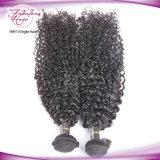 as melhores tramas malaias Curly Kinky de venda do cabelo 8A humano