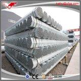 Tubo galvanizado construcción soldado estándar de los tubos de acero del carbón