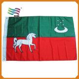 Grande bandiera nazionale degli Emirati Arabi Uniti del poliestere (HYNF-AF005)