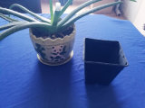 Black PS Flower Pot PS Garden Pot Black PS Plant Pot Blister Tray