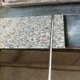 Tegels van het Graniet van de Huid van de tijger de Rode in Opgepoetste of Gevlamde Oppervlakte