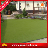 [فر سمبل] يرتّب اصطناعيّة عشب تمويه مرج لأنّ حديقة