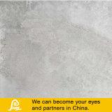 Sentimento natural 600X600mm da telha rústica da porcelana do cimento (Adana Gris)
