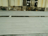Tubo del acero inoxidable de ASTM A312 TP304L para la línea de transporte del gas del &Oil de la industria química