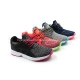 Jolies chaussures multicolores de sport de Phylon
