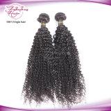 Cheveu bouclé crépu de Brésilien de Vierge de Remy dessiné par double