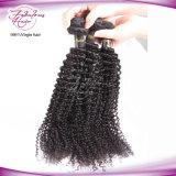 Cabelo Curly Kinky Mongolian livre do emaranhado de trama natural atrativo do cabelo