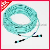 12 Cores Fiber Optic Male MPO to Male MPO Cable