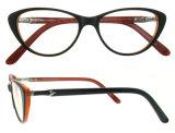 Vetri di Eyewear del progettista del blocco per grafici del monocolo dell'acetato dell'occhio di gatto di modo con Ce e FDA