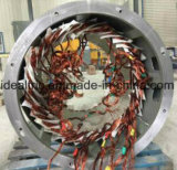 Alternatore sincrono senza spazzola trifase del generatore di CA 75kw 400Hz