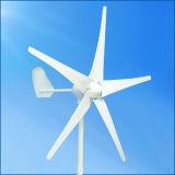熱い販売小さい12V 24V 300Wの水平の風発電機